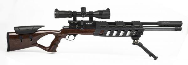 Lee Enfield Sentry PCP Air Rifle 1