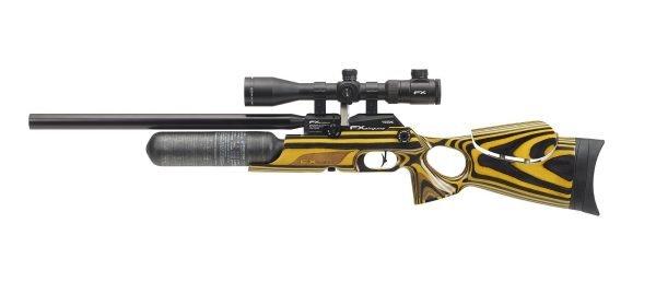 FX Crown PCP Air Rifle 10