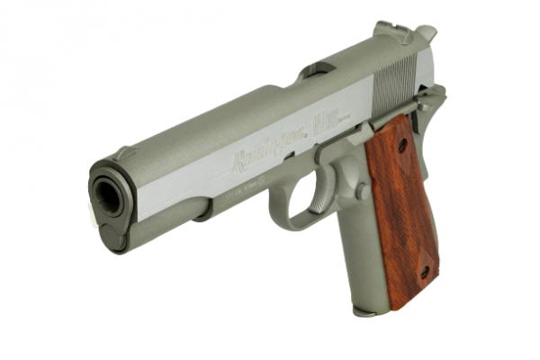 Remington SA 1911 RAC Seventies CO2 3